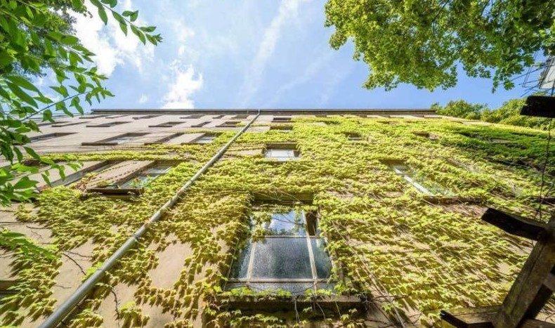 Jolie façade extérieure et végétale